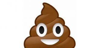 El icono emoji caca mojon helado