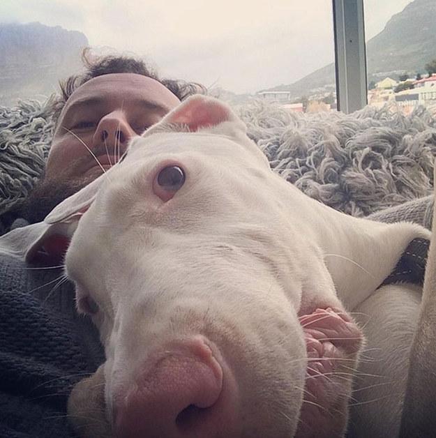 No sabía cuánto viviría su adorable Cachorro, y lo Grabó durante todos los días