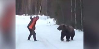 Le persigue un oso por el bosque