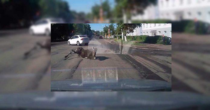 Imagínate que vas conduciendo por la calle y que esto ocurra