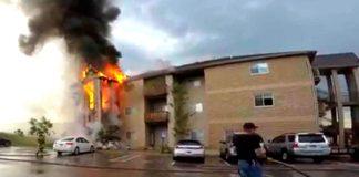 Incendio salvan tres perros