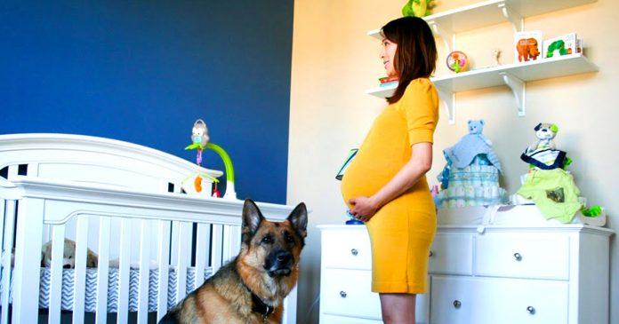 Time lapse embarazo