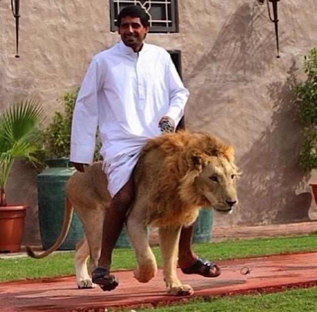 Dubai millonarios ricos extravagantes 03