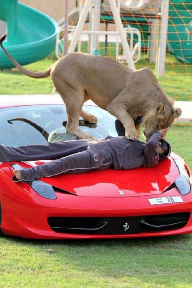 Dubai millonarios ricos extravagantes 04