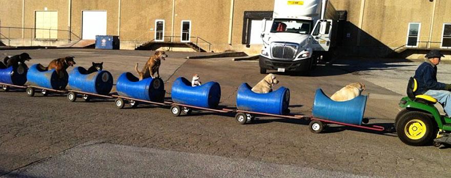Este hombre construye un tren para llevarse de aventuras a los perros callejeros rescatados