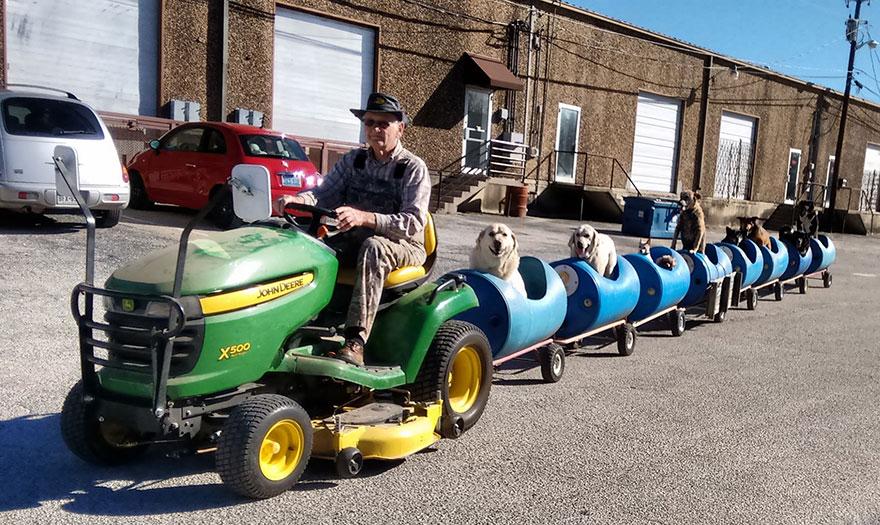 Este hombre construye un tren para llevarse de aventuras a los perros callejeros rescatados 04