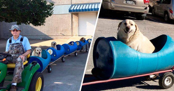 Este hombre construye un tren para llevarse de aventuras a los perros callejeros rescatados banner