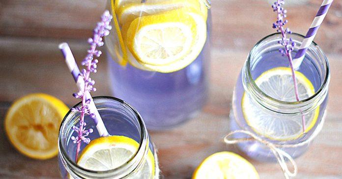Como preparar limonada de lavanda dolor de cabeza ansiedad estres