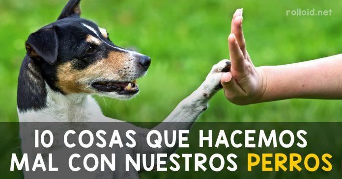 10 cosas que hacemos mal con nuestros perros banner