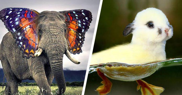 15 criaturas fantasticas creadas en photoshop banner