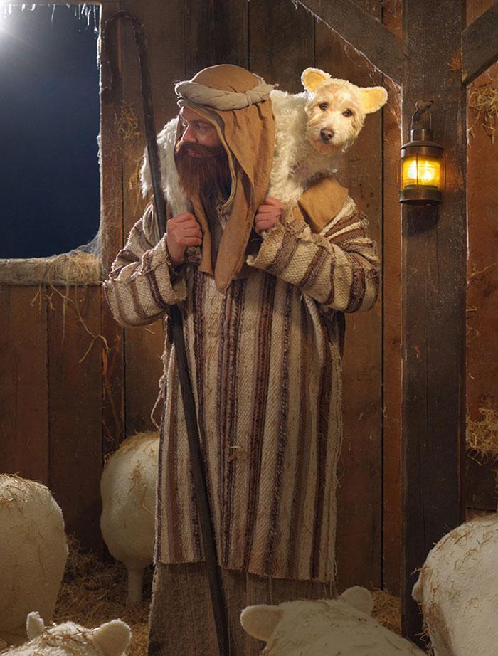Cada Navidad transforma a su Perro en un animal distinto