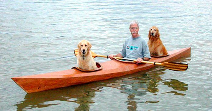 Este Hombre construyo su propio Kayak personalizado para llevarse a sus Perros de Aventuras
