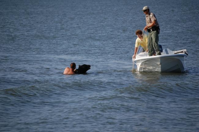Este increible hombre arriesgo su propia vida para salvar a un enorme oso 06