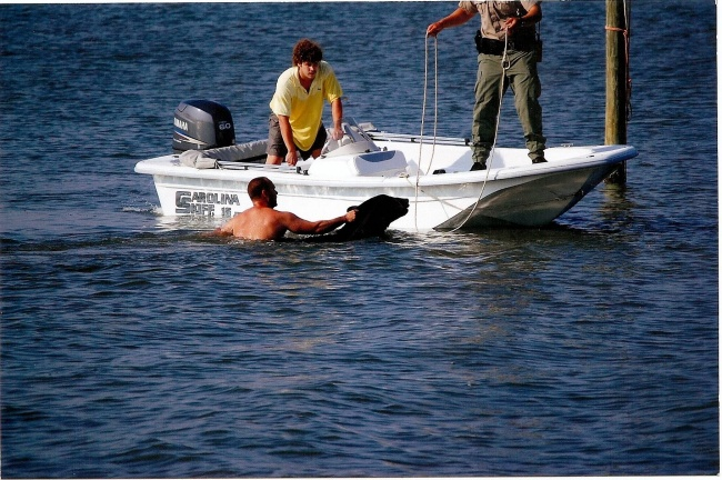 Este increible hombre arriesgo su propia vida para salvar a un enorme oso 07