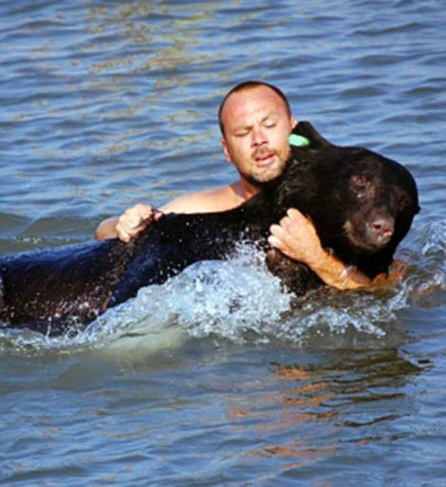 Este increible hombre arriesgo su propia vida para salvar a un enorme oso 08