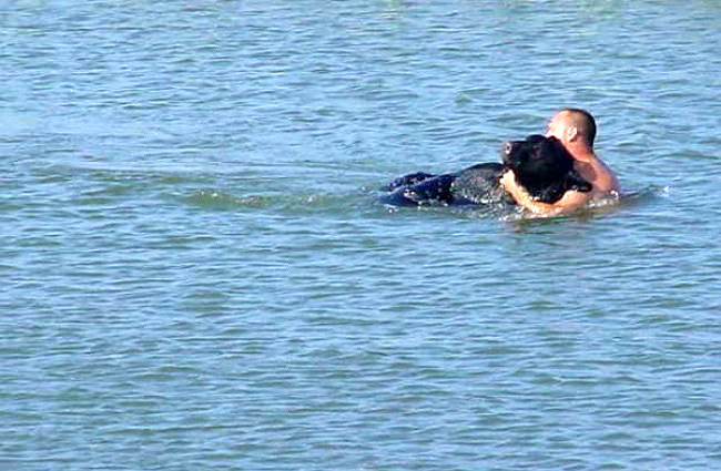 Este increible hombre arriesgo su propia vida para salvar a un enorme oso 09