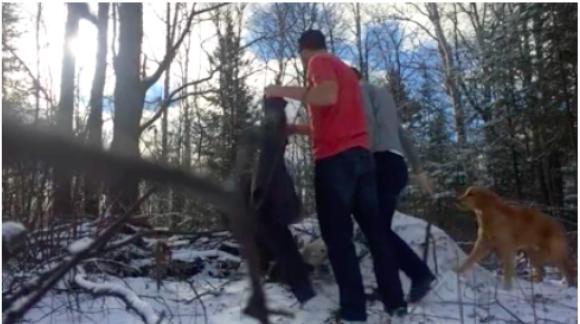 Estos dos Canadienses rescataron un Águila Calva y se sacaron un Selfie Épico