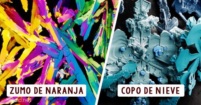 Fotografias Microscopio universo increible BANNER