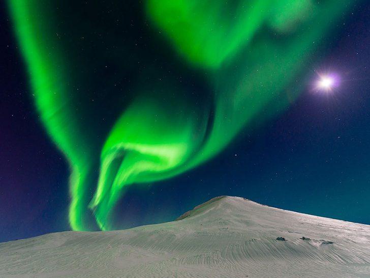 Las mejores fotografias de National Geographic de este ano 10