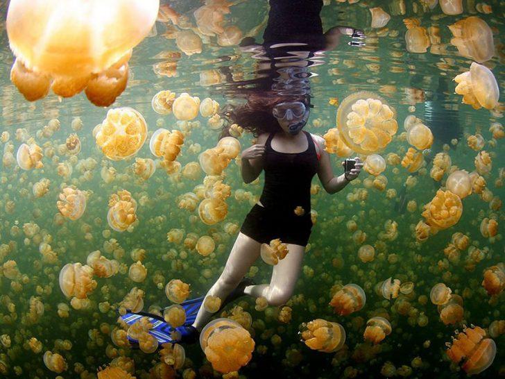 Las mejores fotografias de National Geographic de este ano 17