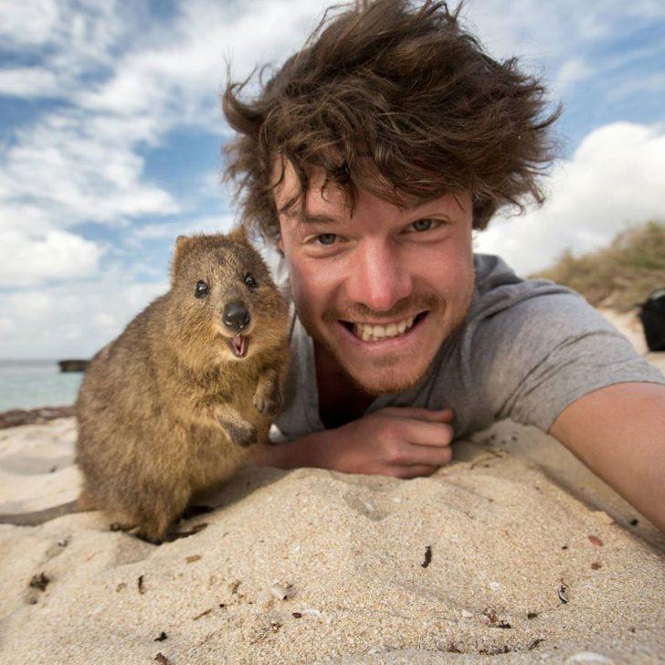 Maestro selfies con animales 01