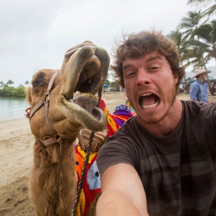 Maestro selfies con animales 03