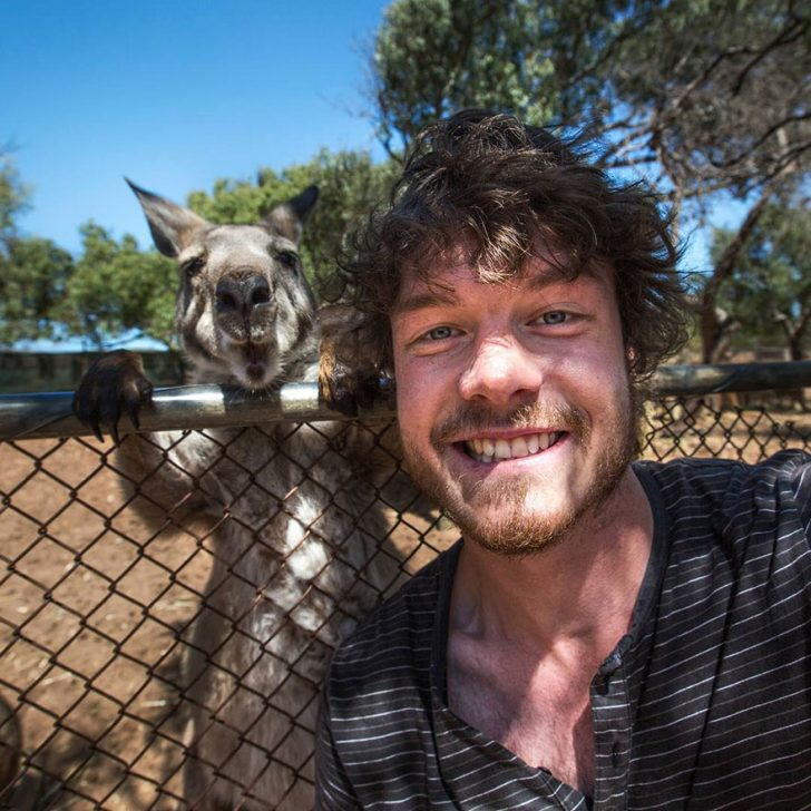 Maestro selfies con animales 04