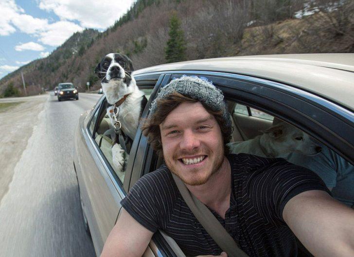 Maestro selfies con animales 07
