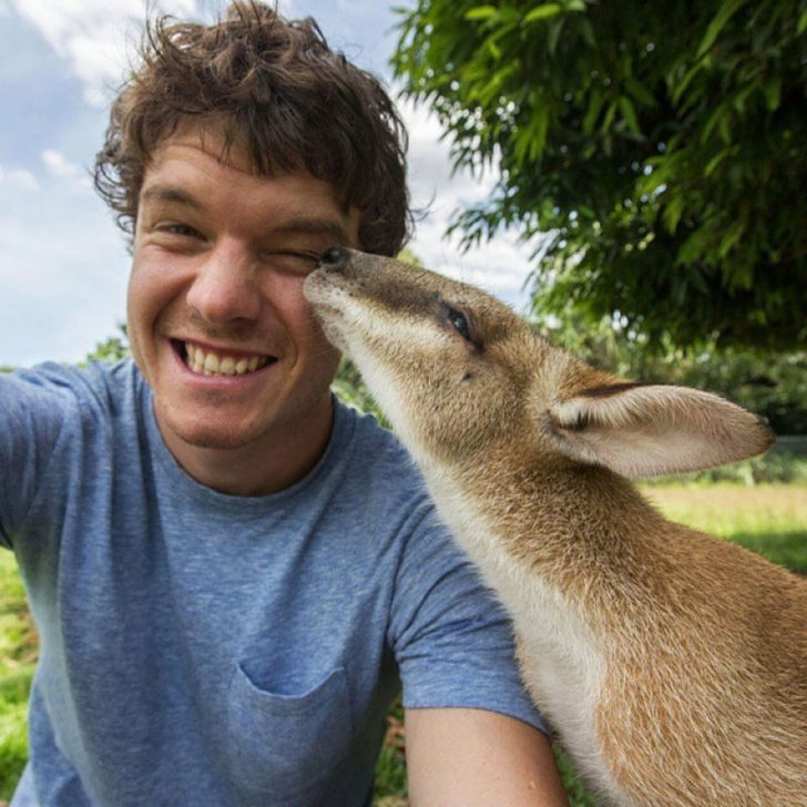 Maestro selfies con animales 08