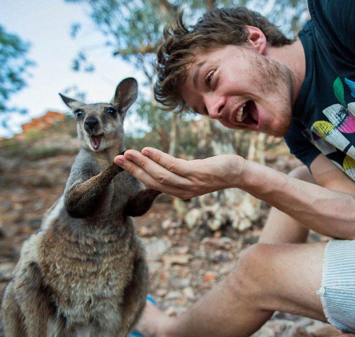 Maestro selfies con animales 11