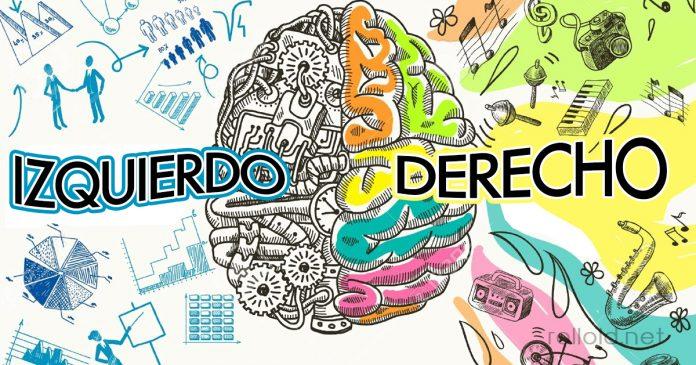 Que hemisferio de tu cerebro domina tu vida banner 2