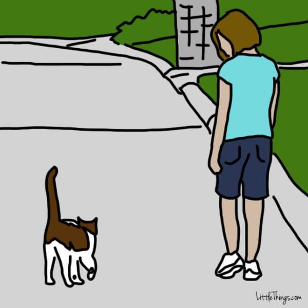 10 maneras que tienen los gatos de decirte te quiero 10