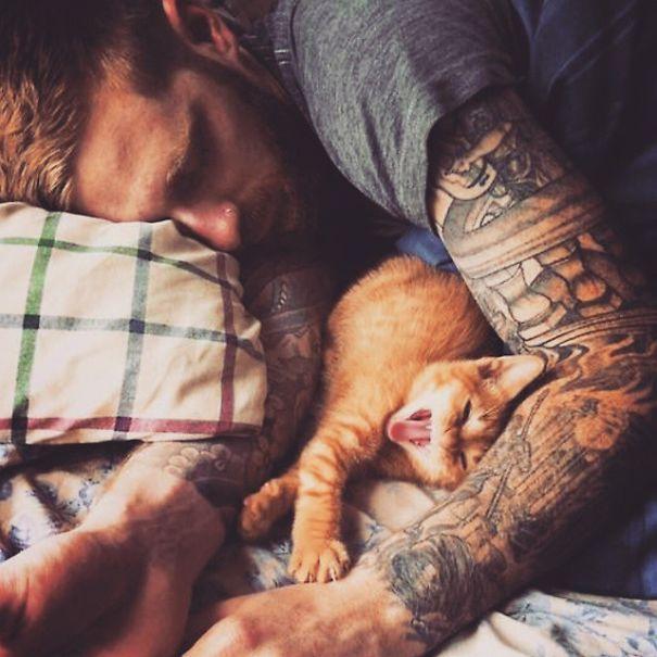 Chicos Sexys con gatitos es todo lo que necesitas ahora miauismo 02