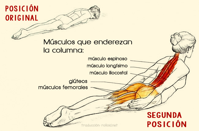Este sencillo Ejercicio Perfeccionará y Fortalecerá tu Postura