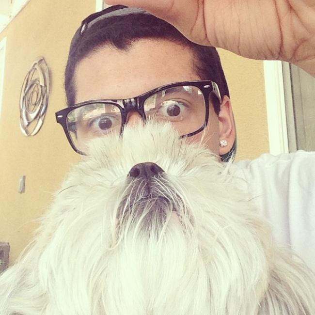 Los perros son los animales mas leales 15