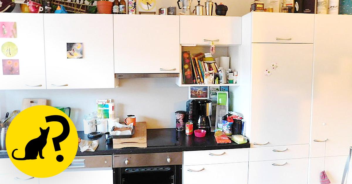 Podrás Encontrar Al Gato Pedro Escondido En Esta Cocina
