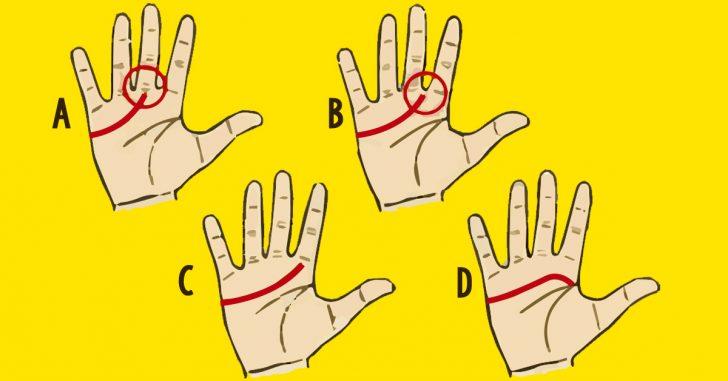4 Tipos de manos y las posibles líneas de corazón en cada una de ellas