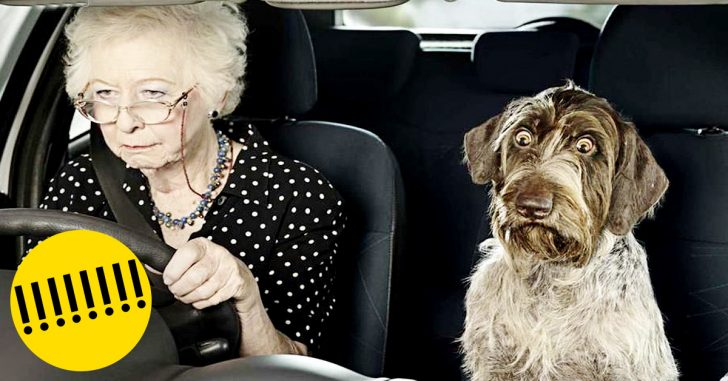 detuve a una anciana al volante banner