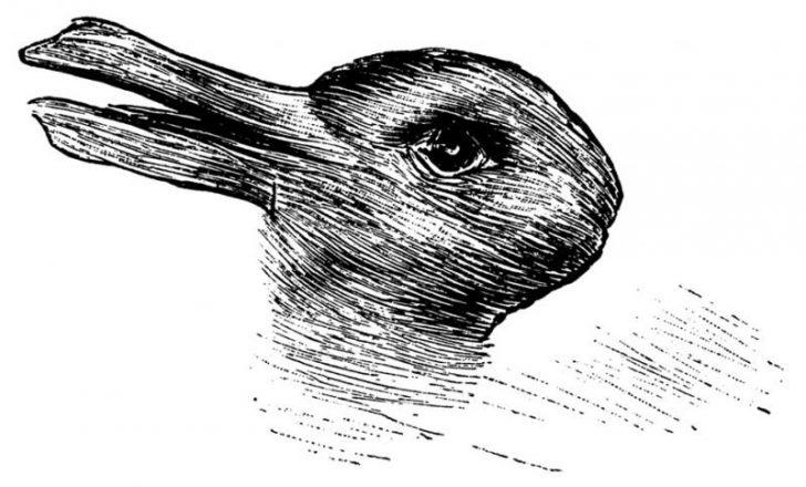 acertijo ilusion optica pato conejo 01