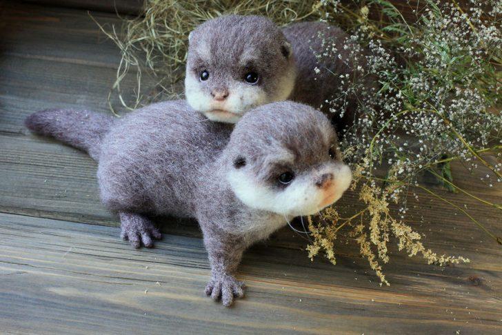 Estos adorables Animales esconden Un Secreto Muy Especial...