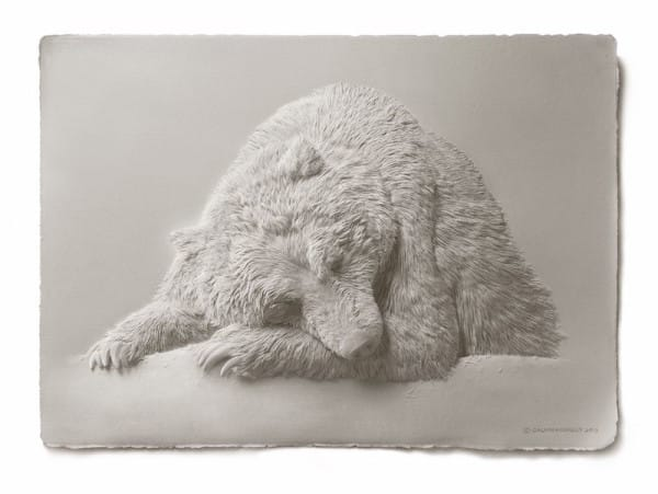 calvin nicholls arte esculturas papel 02