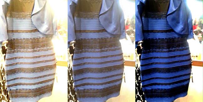 color chaqueta blanca azul marron negra 01