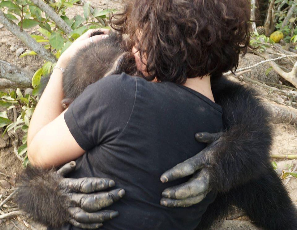 Chimpance abandonado 02