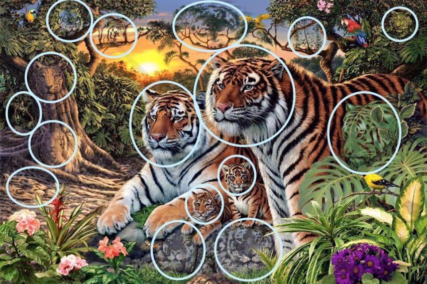 Pocas personas son capaces de encontrar a todos los Tigres de Esta Imagen 03