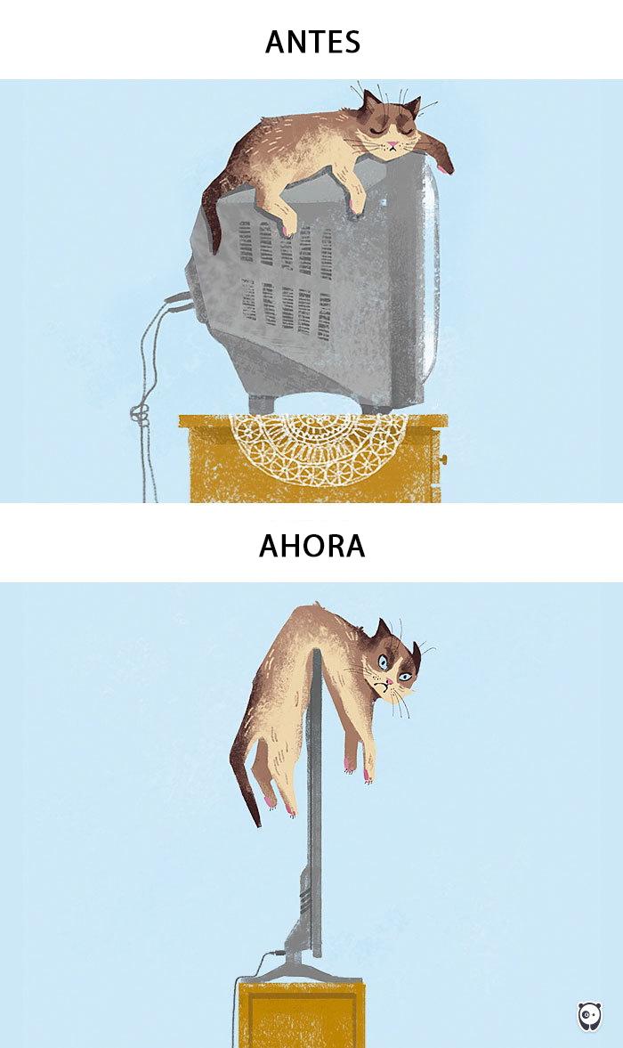 Descubre como la tecnologia ha cambiado la vida de nuestras mascotas 01 copy