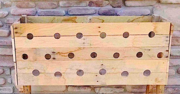 Perforo 19 agujeros en una Caja de Madera banner