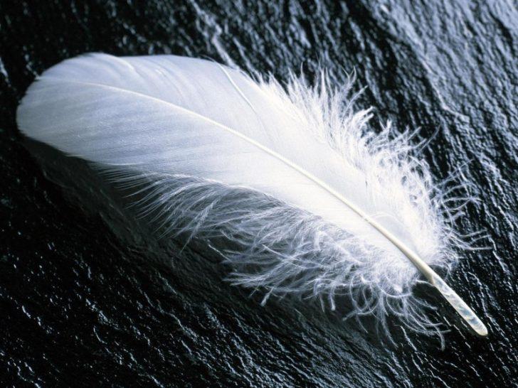 Signos para conocer cuando te acompana tu angel de la guarda 04