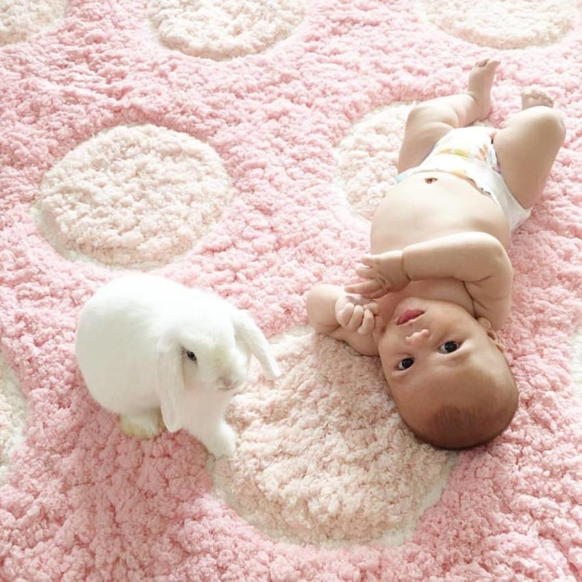 El pequeño bebé se preparaba para la siesta. Pero fíjate en el individuo de la izquierda...