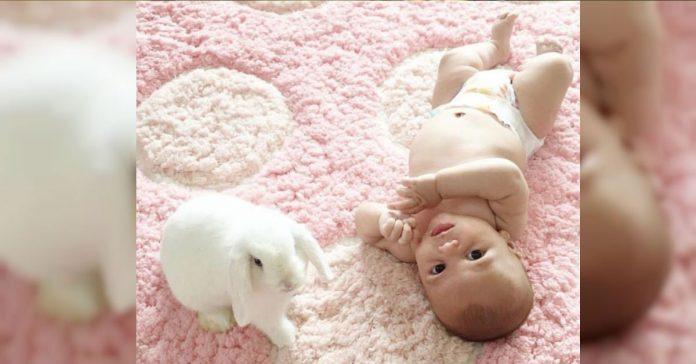 El pequeno bebe se preparaba para la siesta banner