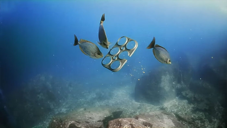 Esta empresa ha encontrado una Increible manera de Proteger toda la vida submarina 10